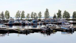 Veneitä Joensuun Linnunlahden venesatamassa.