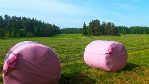 Pinkkejä pyöräpaaleja pellolla Paraisilla.