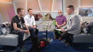 Vieraina Unityn toimitusjohtaja Jussi Laakkonen ja lääketieteen tohtori Heimo Langinvainio, joka on tutkinut koirien vaikutusta ihmisten hyvinvointiin.
