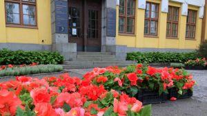 Kukkailaatikoita Mikkelin kaupungintalon edustalla.