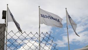 Talvivaaran kaivoksen liput liehuivat heinäkuussa 2014 Sotkamossa.