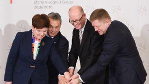 Visegrad-maat juhlivat helmikuussa yhteistyötään. Kuvassa Puolan, Unkarin, Tsekin ja Slovakian pääministerit.