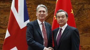 Britannian ulkoministeri Philip Hammond ja Kiinan ulkoministeri Wang Yi Pekingissä huhtikuussa 2016.