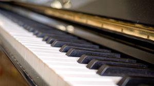 Pianon mustavalkoiset koskettimet lähikuvassa.