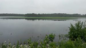 Kauhavalla vesi on noussut pellolle.