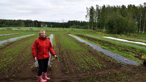 Mari Vänskä-Ruotsalainen pellollaan