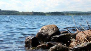 Järvimaisema Pohjois-Karjalan Pielisellä.