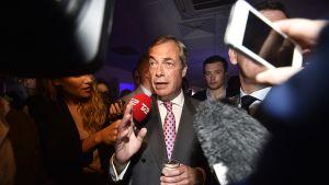 UKIP-puolueen johtaja Nigel Farage.