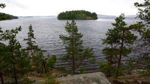 Järvimaisema Päijänteeltä.