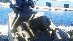 Ajoksen satamasta löytynyt pommi kaivinkoneen kauhassa.