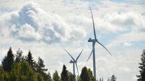 Kaksi tuulimyllyä