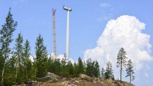 Tuulivoimala valmistumassa, siivet vielä kiinnittämättä.