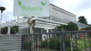 Trooppinen perhospuutarha Botania.