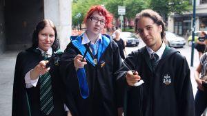 Harry Potter -faneja.