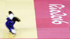 Yleiskuva Rion judosta