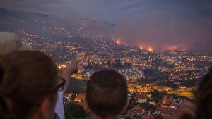 Tulipalo Madeiralla.