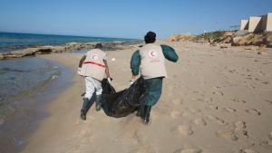Libyan Punaisen puolikuun työntekijät etsivät hukkuneita Tripolin itäpuolella.