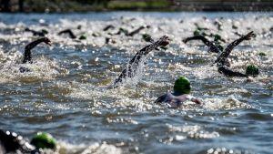 Triathlon, yleiskuva