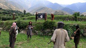 Isis-järjestön aluejohtaja Gul Dali (keskellä) kuvattuna taistelijoidensa ympäröimänä salaisessa paikassa Kunarin provinssissa Afganistanissa 30. heinäkuuta 2015.