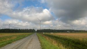 Tuulivoimalaitoksia peltoaukean takana metsässä.