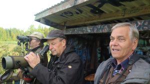 Jukka T. Helin, Jarmo Lehtinen ja Olavi Kalkko lintutornissa Iidesjärvellä. He katsovat järvelle kaukoputkin, kiikarein.