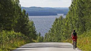Pyöräilijä metsä- ja järvimaisemassa.