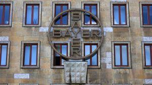 Ikkunoista heijastuu sininen taivas, talon seinässä on suuri logo jossa lukee Bayer.
