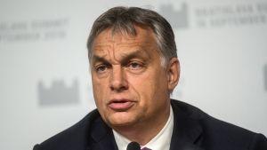 Unkarin pääministeri Victor Orban lehdistötilaisuudessa Bratislavassa 16. syyskuuta.