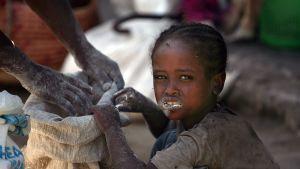 Etiopialainen tyttö syö suoraan maissisäkistä.