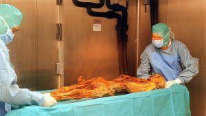Kaksi suojavaatteisiin pukeutunutta tutkijaa pöydällä makaavan muumion vieressä.