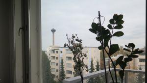 Näkymä vuokra-asunnon olohuoneen ikkunasta