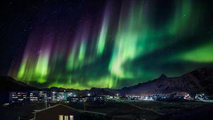 Revontulia Grönlannissa.