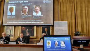 David J. Thouless sekä F. Duncan M. Haldane ja J. Michael Kosterlitz jakavat tämänvuotisen fysiikan Nobel-palkinnon.