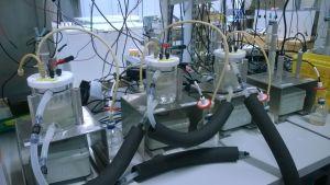 Mikrobien kasvatusta kokeillaan uudella menetelmällä VTT:n tiloissa.