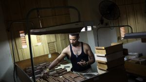 Kuubalaisten sikarien valmistusta Havannassa vuonna 2014