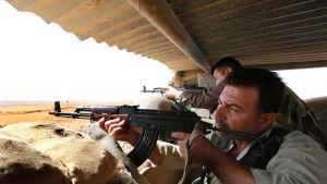 Irakin kurdien Peshmerga-joukkojen sotilaita väijyssä Mosulin lähellä.