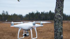 TUKESin kuvauskopterin ensilento Mawsonin Palokkaanlammen valtauksella Ylitoniolla.