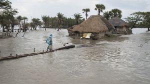 Bengalinlahdella sijaitsevat Mousuni-saari on jo osittain jäänyt ilmastonmuutoksen johdosta nousevan vedenpinnan alle. Kuva on otettu syyskuussa 2016.