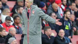 Arsène Wenger Pohjois-Lontoon derbyssä.