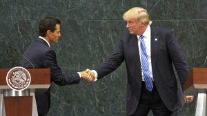 Meksikon presidentti Enrique Peña Nieto ja Donald Tump kättelevät.
