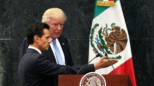 Peña Nieto ja Trump puhujanpöntössä Meksikon lipun edessä.