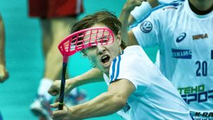Miko Kailiala vuoden 2014 MM-kisoissa