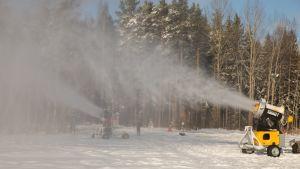 Paloheinässä lumetaan latuja kovalla kiireellä.