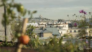 Pariisin panoraamanäkymä kattopuutarhasta kuvattuna.