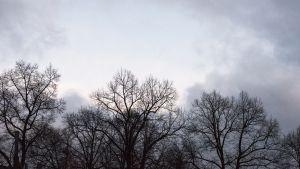 Syksyinen sää, pilvet.