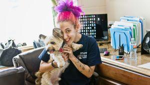 Pet Orphans –eläinsuojelujärjestön toimistovirkailija Veronica Witkin työpaikallaan koiransa Nerfin kanssa.