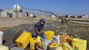Tyttö laskee letkulla vettä vesiastiaan, paljon keltaisia vesiastioita ja huteran näköinen vesijohtoviritys.