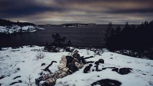 Varusmies sotaharjoituksessa Upinniemen kallioilla marraskuussa 2016.