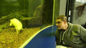 Joulukuun ensimmäisenä yönä halukkaiden oli mahdollista yöpyä akvaariotalo Maretariumissa.