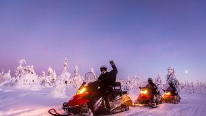 Moottorikelkkailijoita lumisissa maisemissa.
